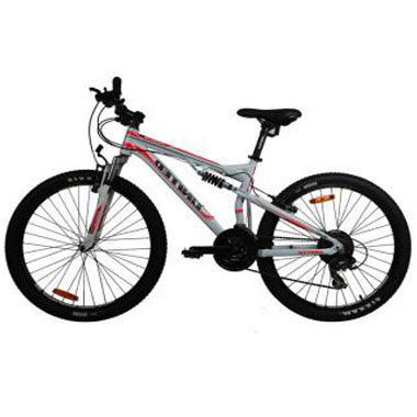 Pilih Mana Sepeda Wimcycle atau Sepeda United? Selera.id