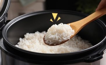 Rice Cooker Keramik vs Stainless