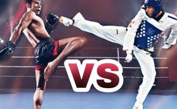 Taekwondo vs Muay Thai